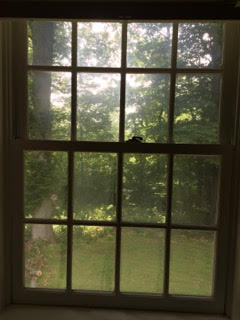 A fogged and dirt window