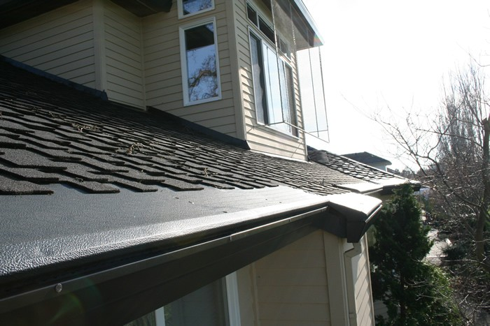 A shingled roof with gutter protection covers over the gutters.