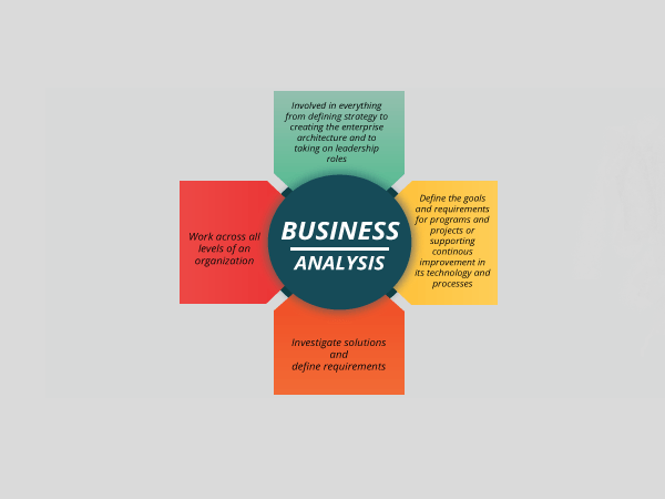 business analysis infographic