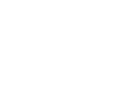 Cann-I-Consulting logo