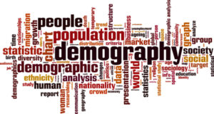 a list of demographics