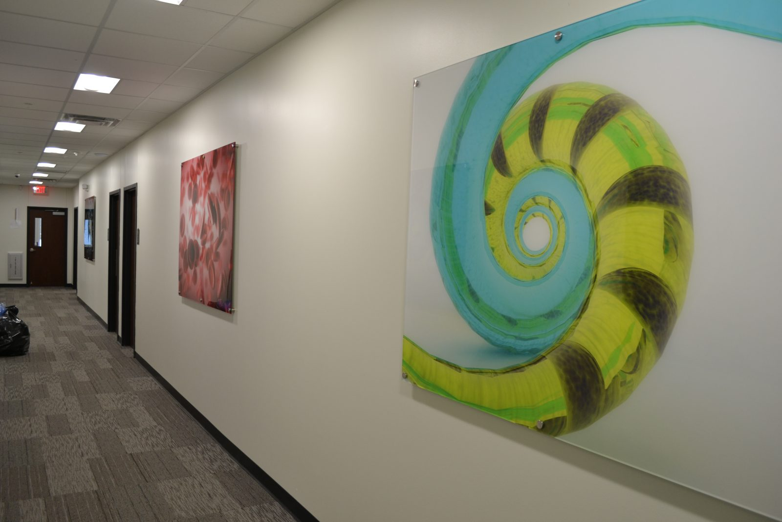 artwork on the walls of a hallway