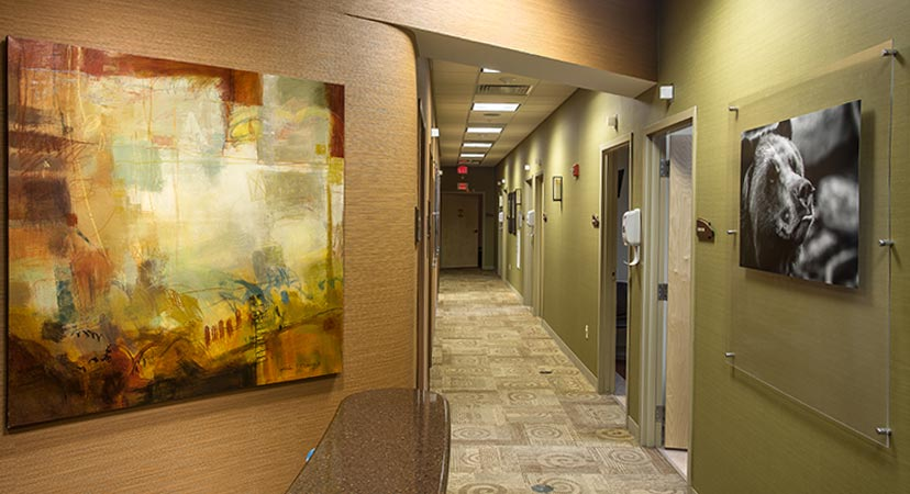 framed pieces of artwork in the hallway of a business