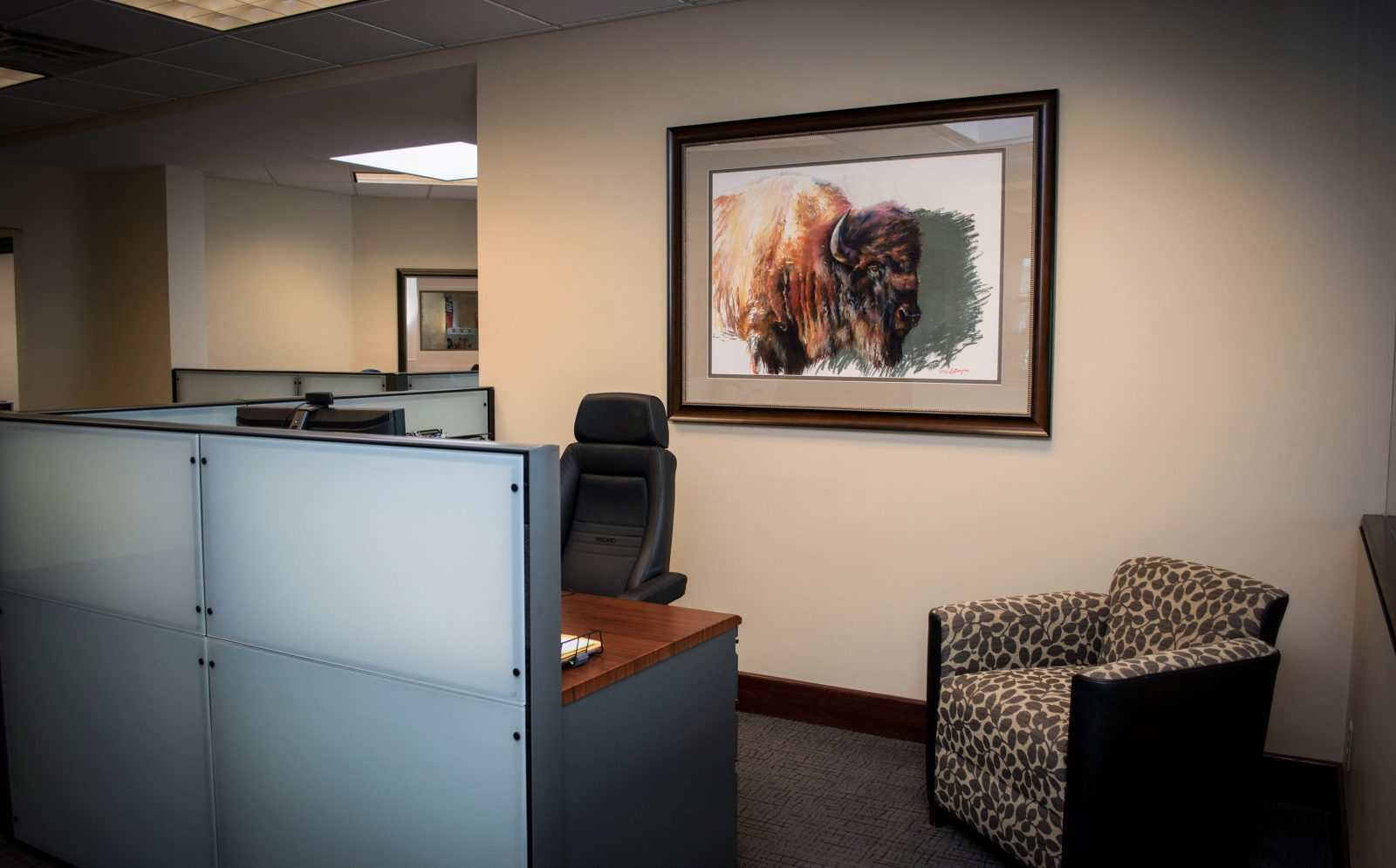 framed buffalo artwork on the wall of an office