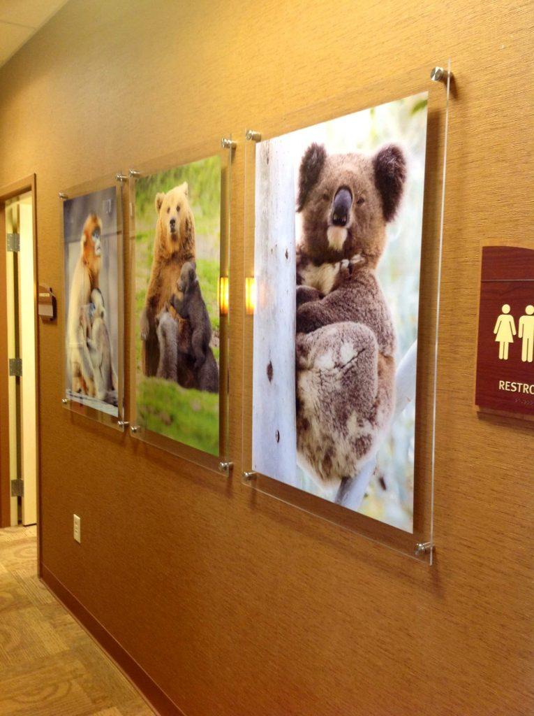 Acrylic prints on a wall