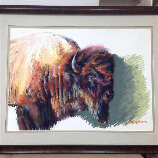Original Buffalo Pastel on paper framed and mattes